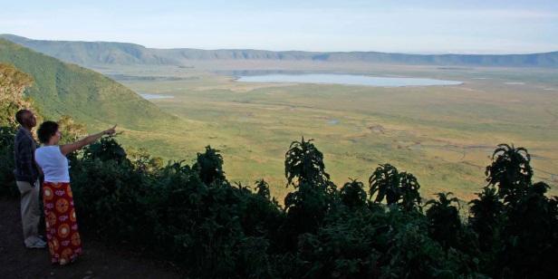 CSI Ngorongoro- Who Killed the Zebra?